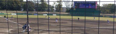 女子野球観戦